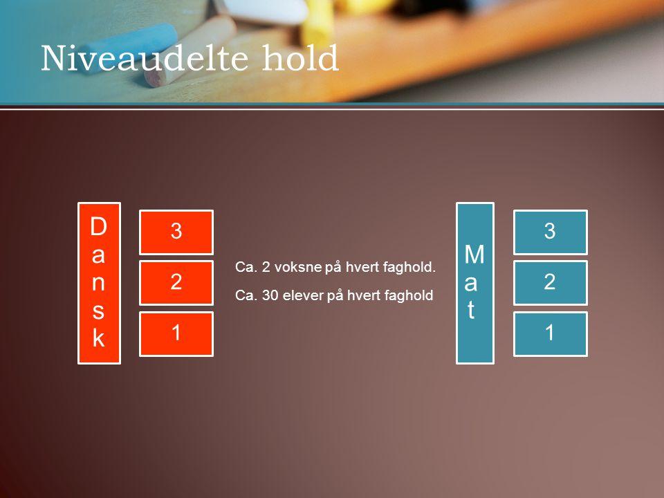 Niveaudelte hold 3 2 1 DanskDansk MatMat 3 2 1 Ca.