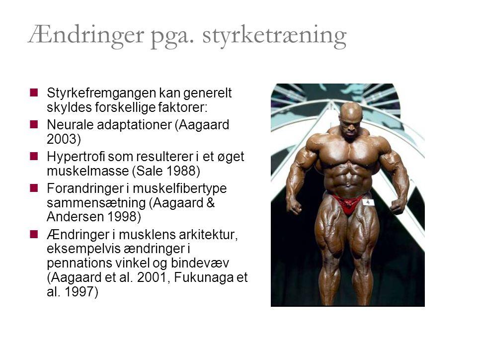 Sikkerhed i styrketræningen  Opvarmning og udspænding er vigtige dele af styrketræningen  Korrekt løfteteknik - herunder et stærkt og veltrænet muskelkorset.