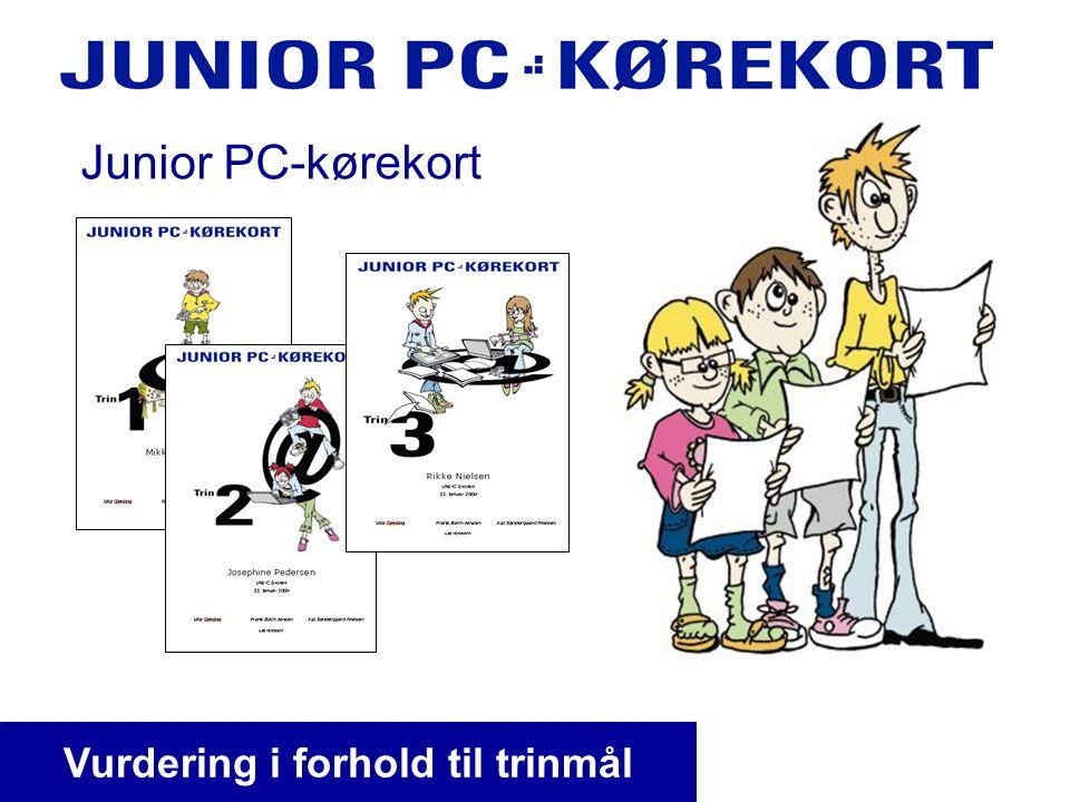 Junior PC-kørekort Vurdering i forhold til trinmål