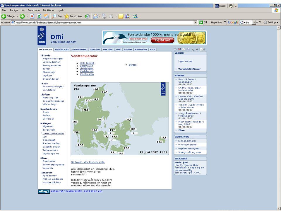Danmarks BiblioteksskoleJuni 2007