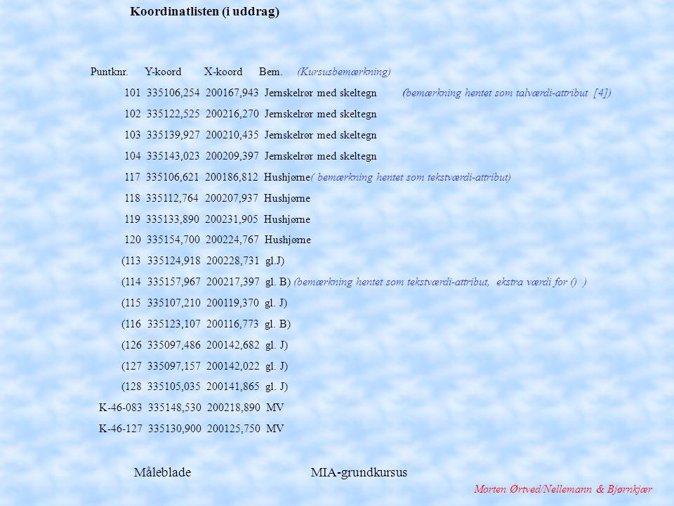 Måleblade MIA-grundkursus Morten Ørtved/Nellemann & Bjørnkjær Koordinatlisten (i uddrag) Puntknr.