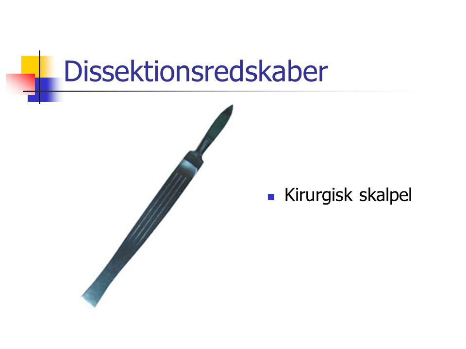 Dissektionsredskaber  Kirurgisk skalpel
