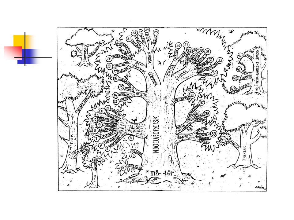 Eksempler på ord fra latin i de romanske sprog LatinItalienskFranskSpanskRum æ nskGermansk amicusamicoamiamigoamic- inimicusnemicoennemienemigo-enemy murusmuromurmuro-Mauer, mur liberlibrolivrelibro-(library) fenestrafinestrafenêtre-fereastrăFenster, fönster lavare laverlavar-(lavatory) ovumuovooeufhuevoou(oval) laclattelaitlechelapte-