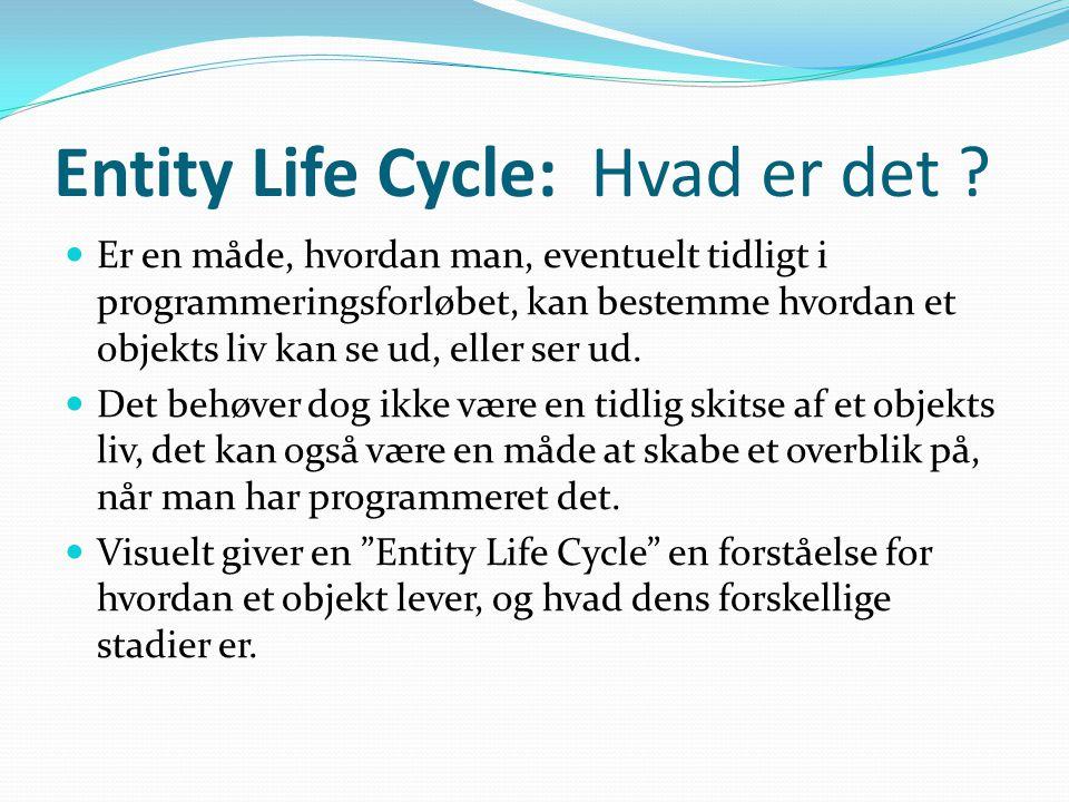 Entity Life Cycle: Hvad er det .