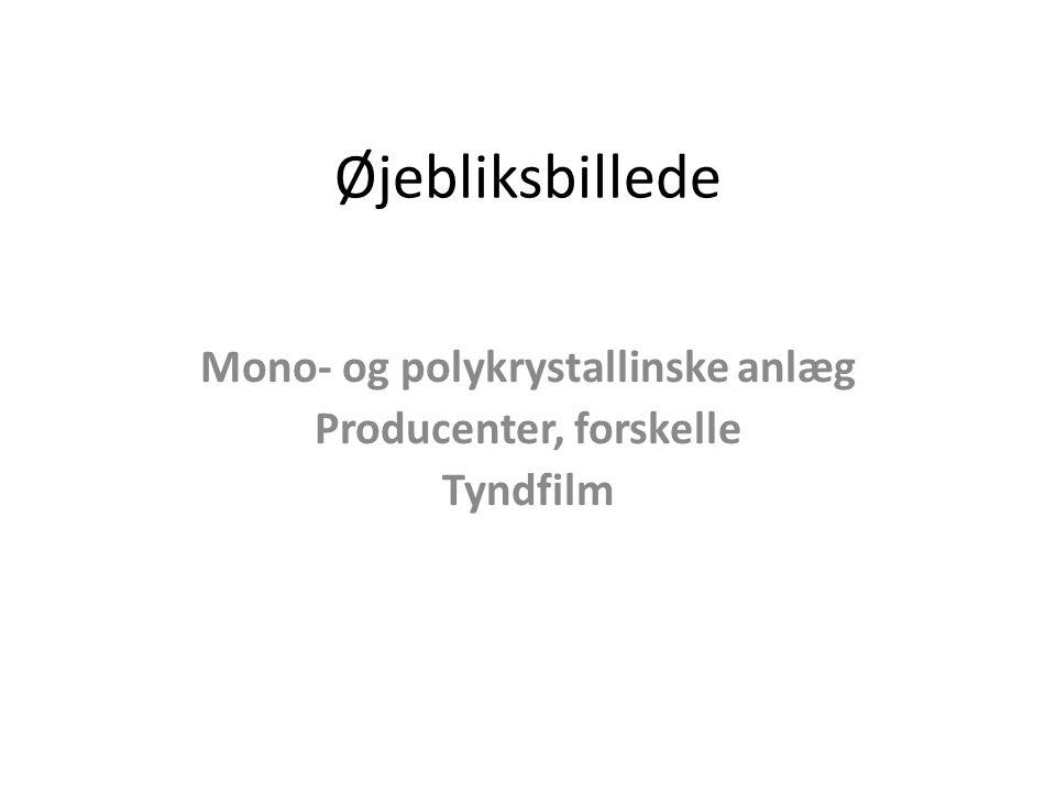 Øjebliksbillede Mono- og polykrystallinske anlæg Producenter, forskelle Tyndfilm