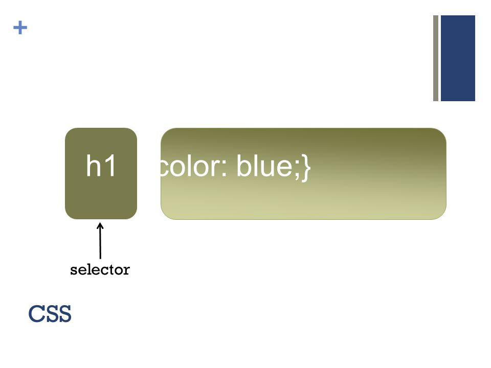 + CSS h1 {color: blue;} selector