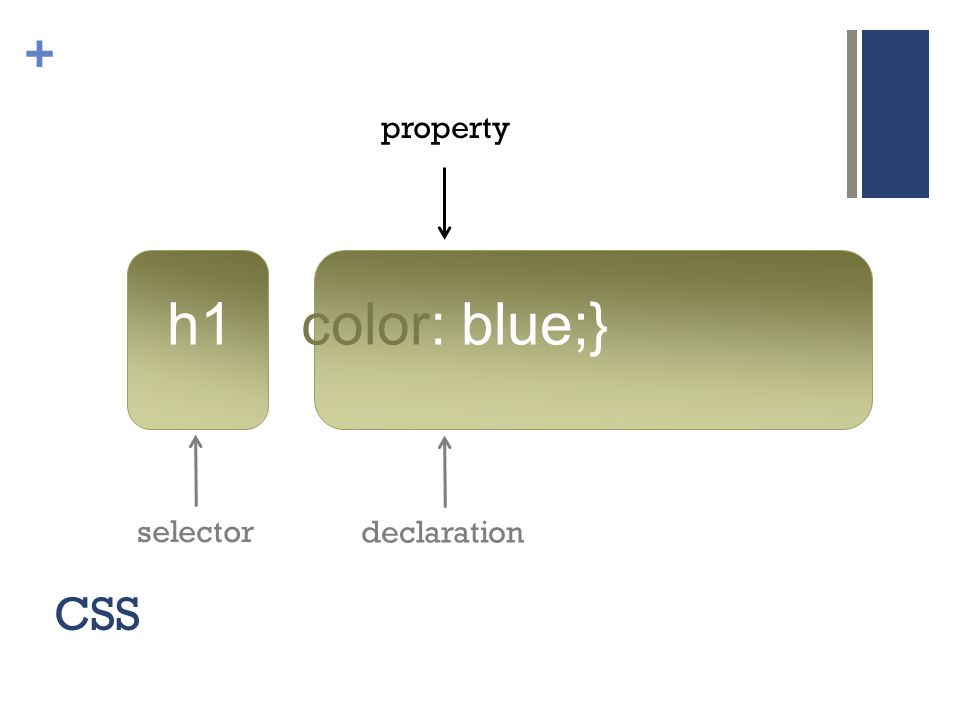 + CSS h1 {color: blue;} selector declaration property