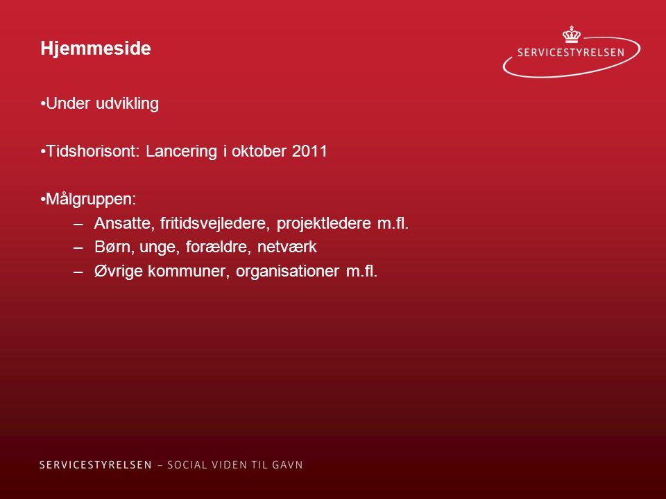 Hjemmeside Under udvikling Tidshorisont: Lancering i oktober 2011 Målgruppen: –Ansatte, fritidsvejledere, projektledere m.fl.