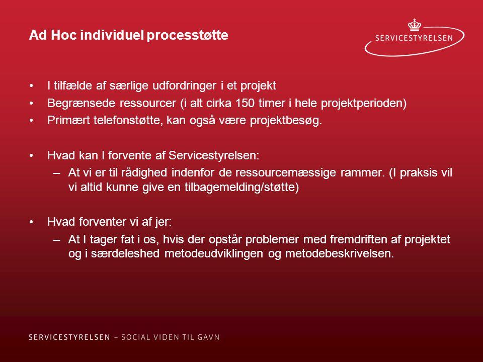 Ad Hoc individuel processtøtte I tilfælde af særlige udfordringer i et projekt Begrænsede ressourcer (i alt cirka 150 timer i hele projektperioden) Primært telefonstøtte, kan også være projektbesøg.