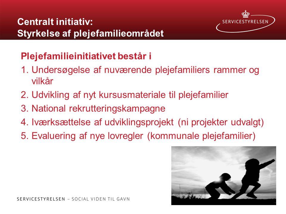 Centralt initiativ: Styrkelse af plejefamilieområdet Plejefamilieinitiativet består i 1.Undersøgelse af nuværende plejefamiliers rammer og vilkår 2.Udvikling af nyt kursusmateriale til plejefamilier 3.National rekrutteringskampagne 4.Iværksættelse af udviklingsprojekt (ni projekter udvalgt) 5.Evaluering af nye lovregler (kommunale plejefamilier)