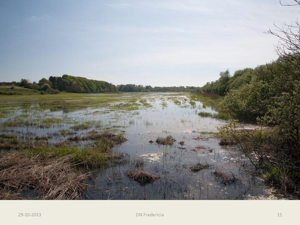 Rands Fjord - Egeskov – og en sti 29-10-2013DN Fredericia11 Fredninger og naturområder