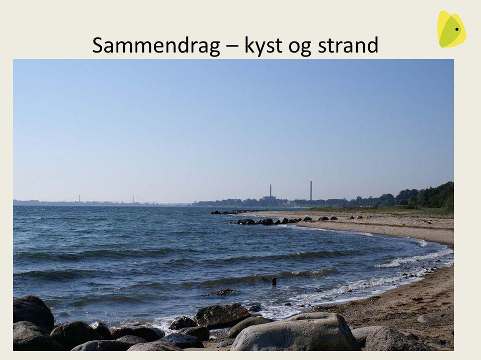 29-10-2013DN Fredericia13 Sammendrag – kyst og strand Bådebroer – Kommunen tager sig af sagen.