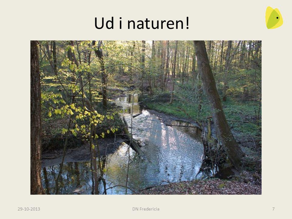 Vi opfordrer til ture i naturen i vores nyhedsbrev.
