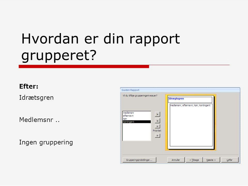 Hvordan er din rapport grupperet Efter: Idrætsgren Medlemsnr.. Ingen gruppering
