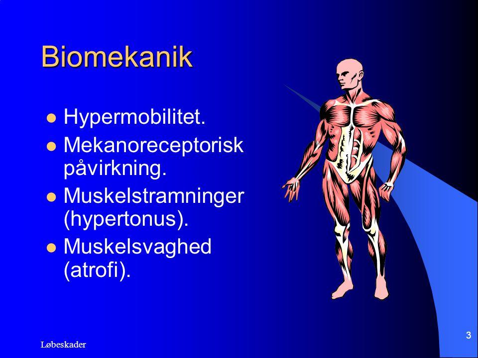Løbeskader 3 Biomekanik Hypermobilitet. Mekanoreceptorisk påvirkning. Muskelstramninger (hypertonus). Muskelsvaghed (atrofi).