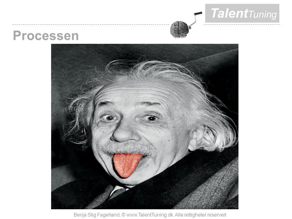 Talent Tuning Processen Benja Stig Fagerland, © www.TalentTuning.dk. Alle rettigheter reservert