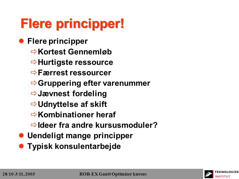 28/10-3/11, 2003 ROB-EX Gantt Optimizer kursus Flere principper.