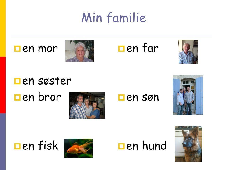 Min familie  en mor  en søster  en bror  en fisk  en far  en søn  en hund