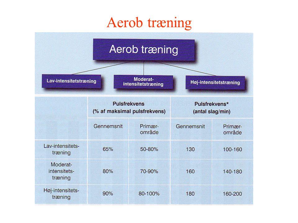 Aerob træning