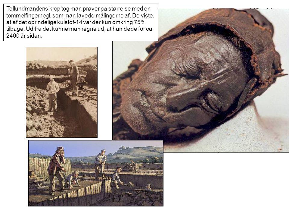 Tollundmandens krop tog man prøver på størrelse med en tommelfingernegl, som man lavede målingerne af.