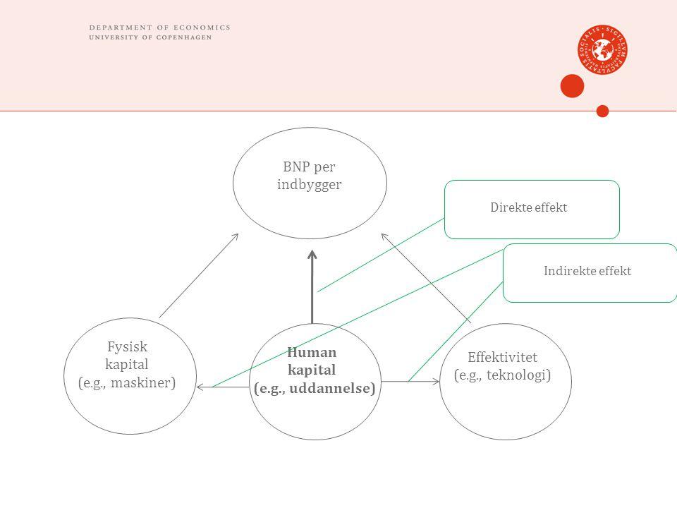 BNP per indbygger Fysisk kapital (e.g., maskiner) Human kapital (e.g., uddannelse) Effektivitet (e.g., teknologi) Direkte effekt Indirekte effekt