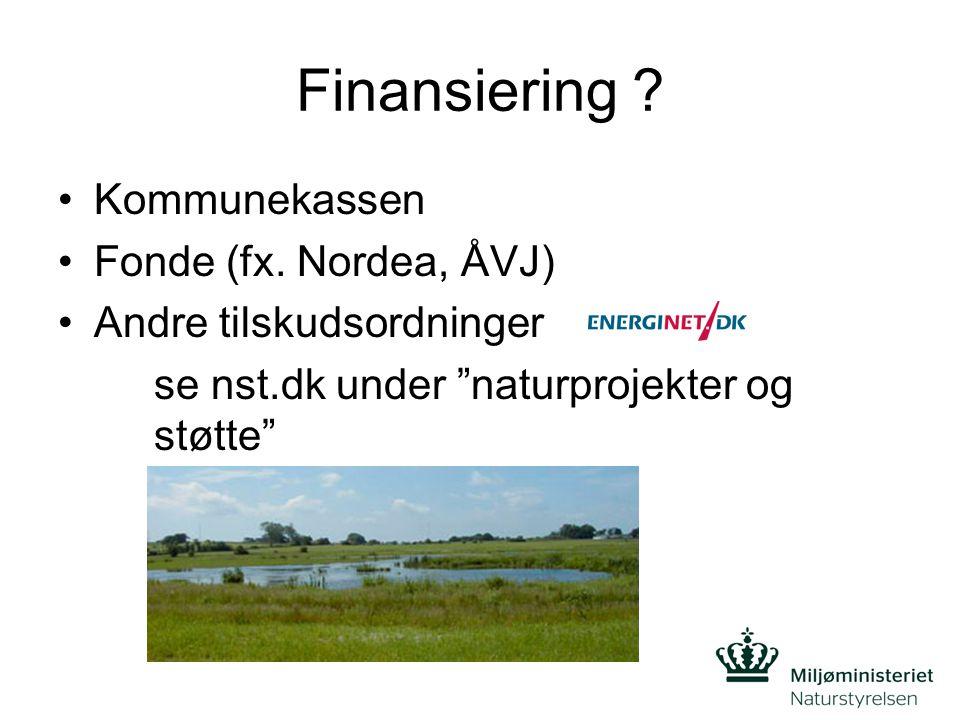 Finansiering . Kommunekassen Fonde (fx.