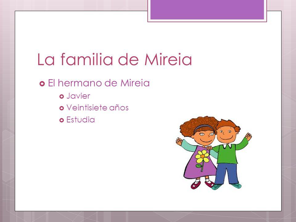 La familia de Mireia  El hermano de Mireia  Javier  Veintisiete años  Estudia