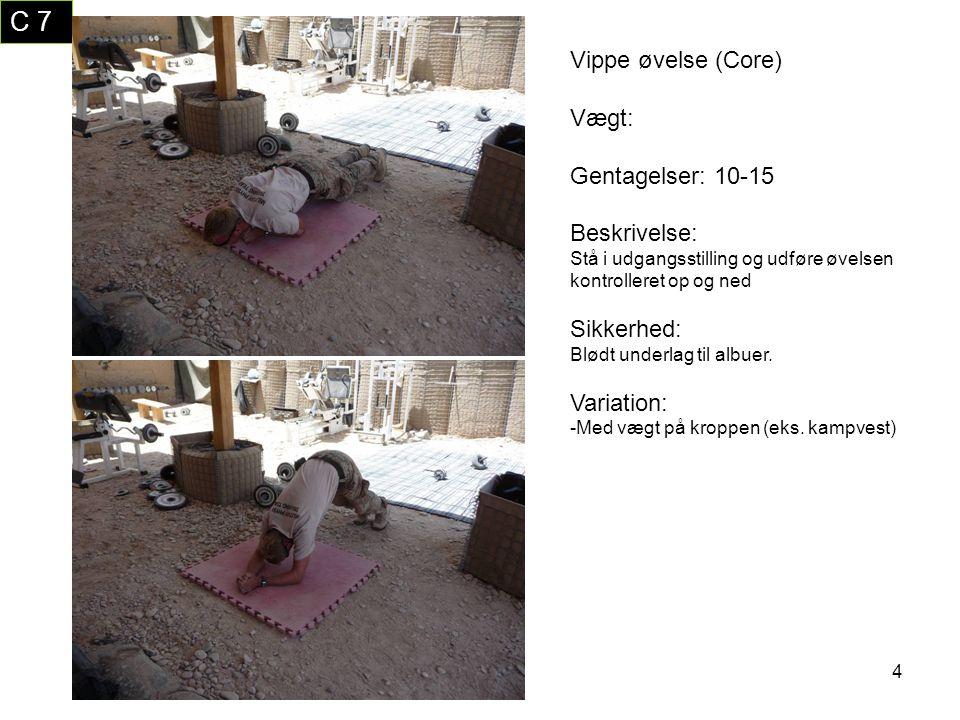 15 T 1 En arms roning (Core) Vægt: Afpasses efter styrke Gentagelser: 6-12 Beskrivelse: Øvelsen udføres som et almindelig træk med så stort bevægelsesudslag som muligt.