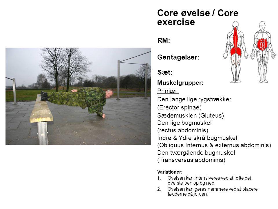 19 A10 Svingøvelse (Core) Vægt: Afpasses efter styrke Gentagelser: 10-15 Beskrivelse: Rotationsøvelsen gennemføres med lav intensitet fra side til side, til rytme og styrke er oparbejdet.