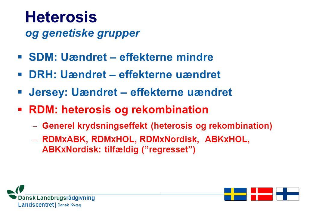 10 Dansk Landbrugsrådgivning Landscentret | Dansk Kvæg Heterosis og genetiske grupper  SDM: Uændret – effekterne mindre  DRH: Uændret – effekterne uændret  Jersey: Uændret – effekterne uændret  RDM: heterosis og rekombination  Generel krydsningseffekt (heterosis og rekombination)  RDMxABK, RDMxHOL, RDMxNordisk, ABKxHOL, ABKxNordisk: tilfældig ( regresset )