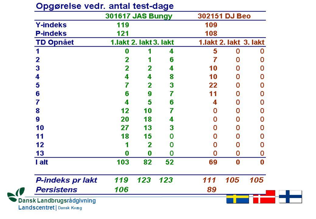 26 Dansk Landbrugsrådgivning Landscentret | Dansk Kvæg