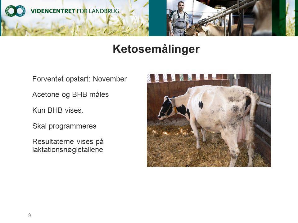 Ketosemålinger Forventet opstart: November Acetone og BHB måles Kun BHB vises.