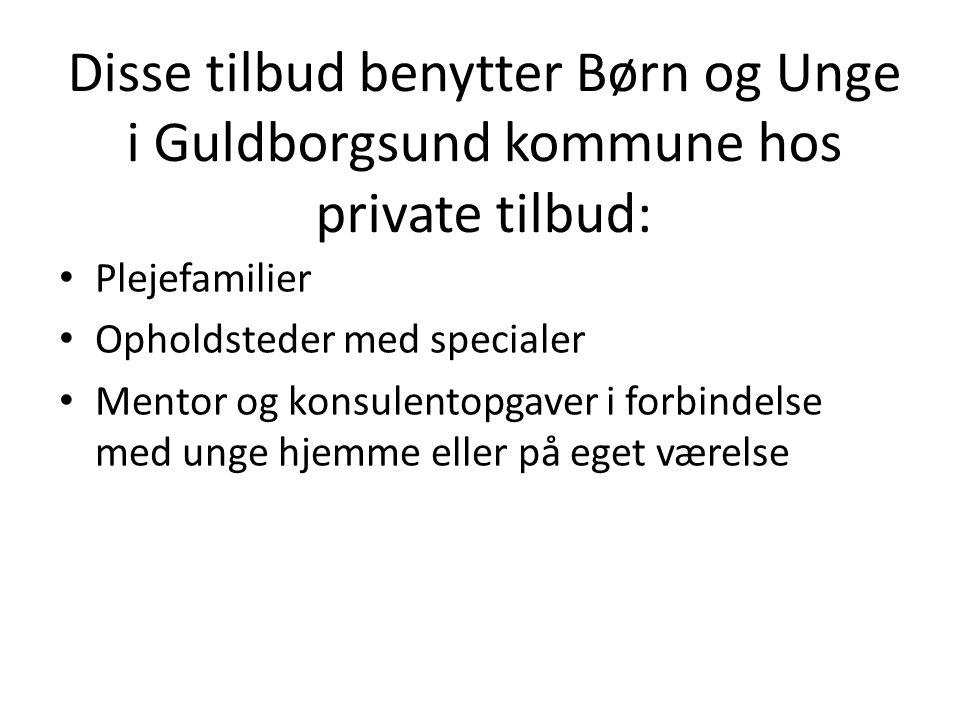 Disse tilbud benytter Børn og Unge i Guldborgsund kommune hos private tilbud: Plejefamilier Opholdsteder med specialer Mentor og konsulentopgaver i forbindelse med unge hjemme eller på eget værelse