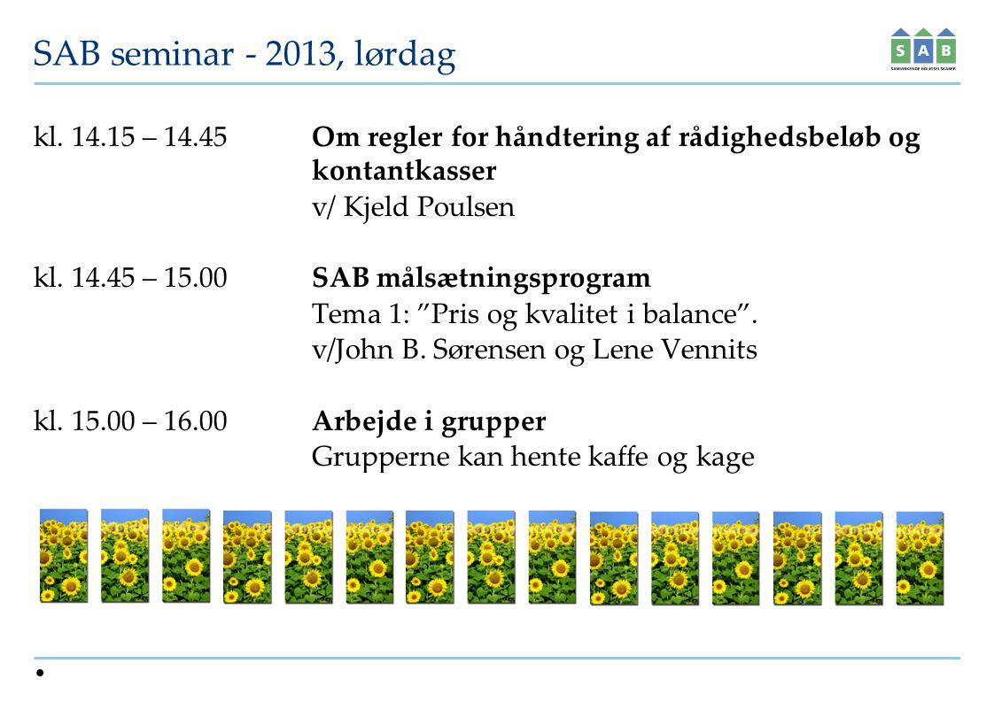 SAB seminar - 2013, lørdag kl.
