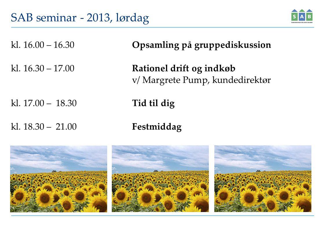 SAB seminar - 2013, lørdag kl. 16.00 – 16.30Opsamling på gruppediskussion kl.