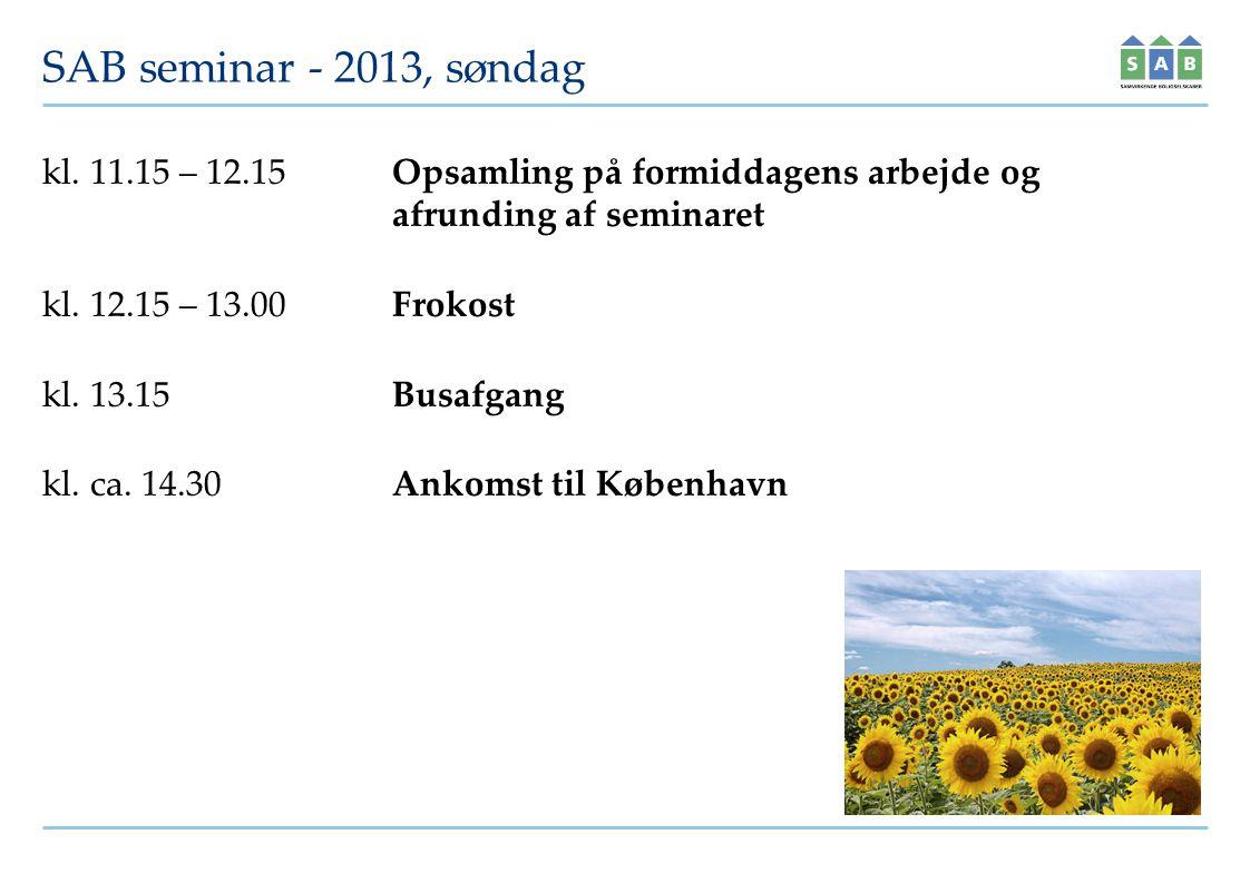 SAB seminar - 2013, søndag kl.