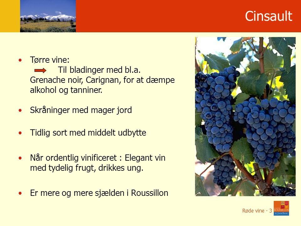 Cinsault Tørre vine: Til bladinger med bl.a.