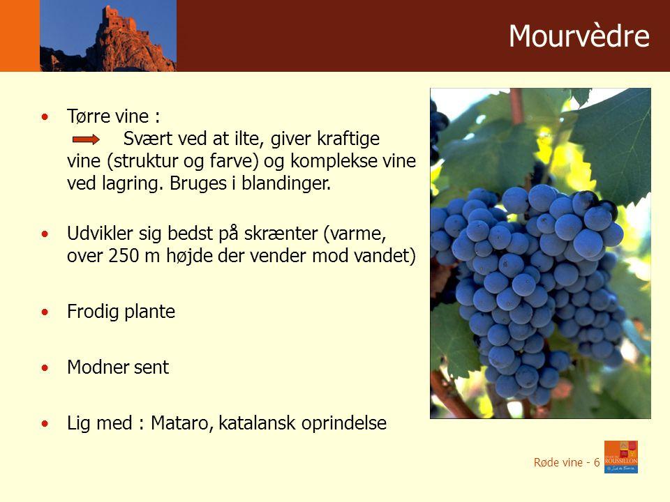 Winnice w liczbach Mourvèdre Tørre vine : Svært ved at ilte, giver kraftige vine (struktur og farve) og komplekse vine ved lagring.