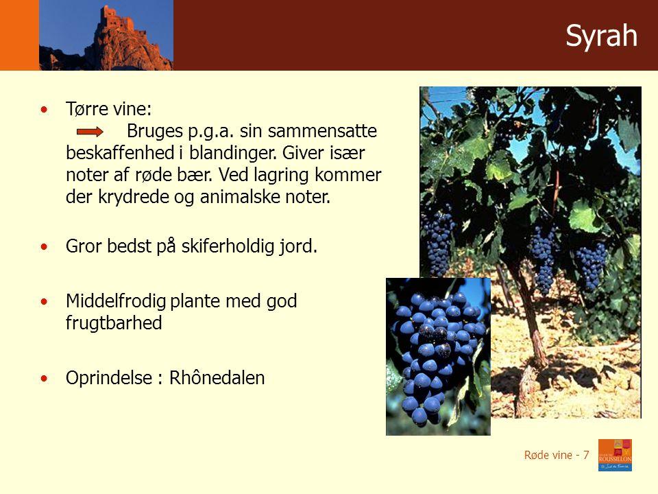 Winnice w liczbach Syrah Tørre vine: Bruges p.g.a.