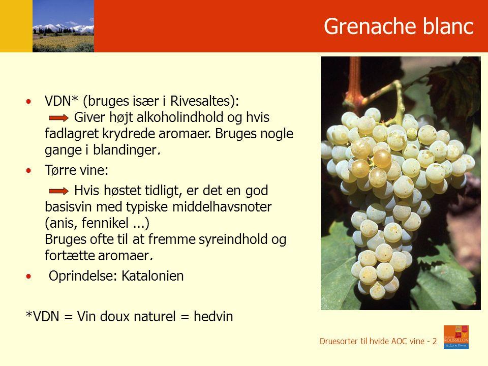 Po ł o ż enie geograficzne Grenache blanc VDN* (bruges især i Rivesaltes): Giver højt alkoholindhold og hvis fadlagret krydrede aromaer.