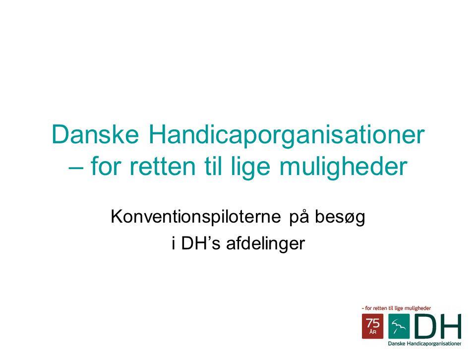 Danske Handicaporganisationer – for retten til lige muligheder Konventionspiloterne på besøg i DH's afdelinger