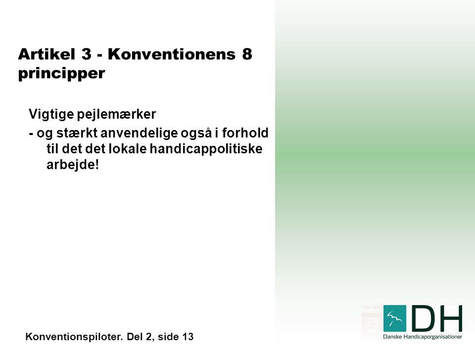 Artikel 3 - Konventionens 8 principper Vigtige pejlemærker - og stærkt anvendelige også i forhold til det det lokale handicappolitiske arbejde.