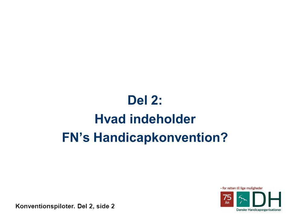 Del 2: Hvad indeholder FN's Handicapkonvention Konventionspiloter. Del 2, side 2