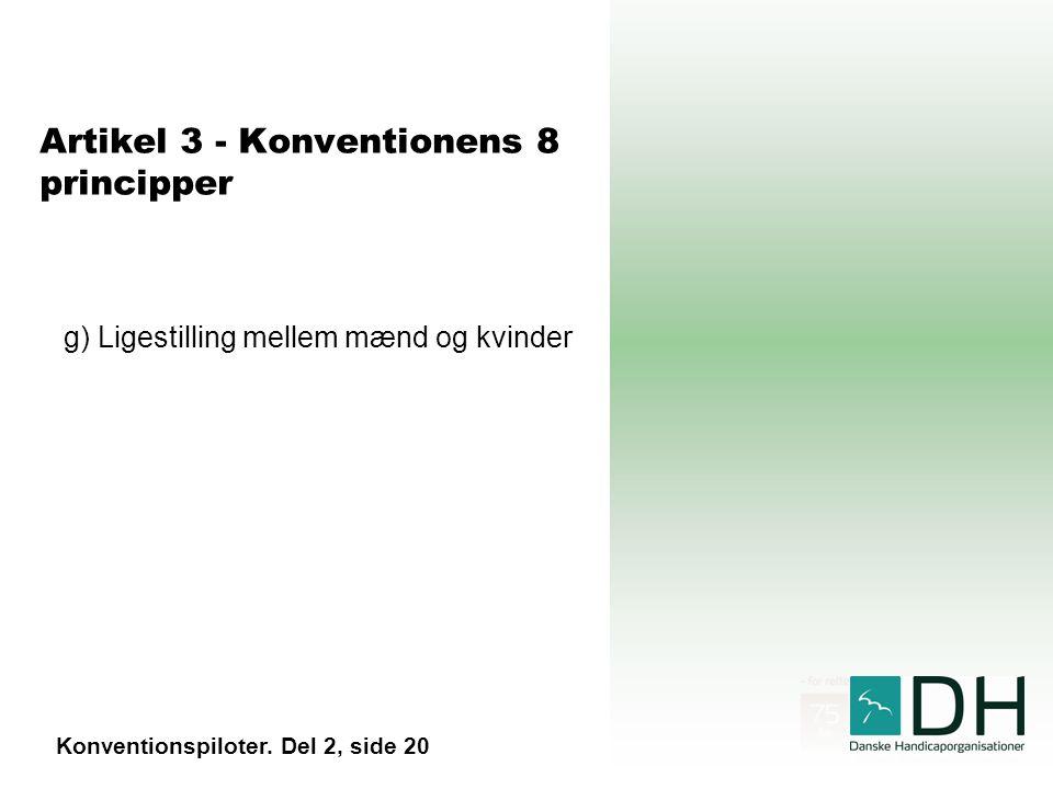 Artikel 3 - Konventionens 8 principper g) Ligestilling mellem mænd og kvinder Konventionspiloter.