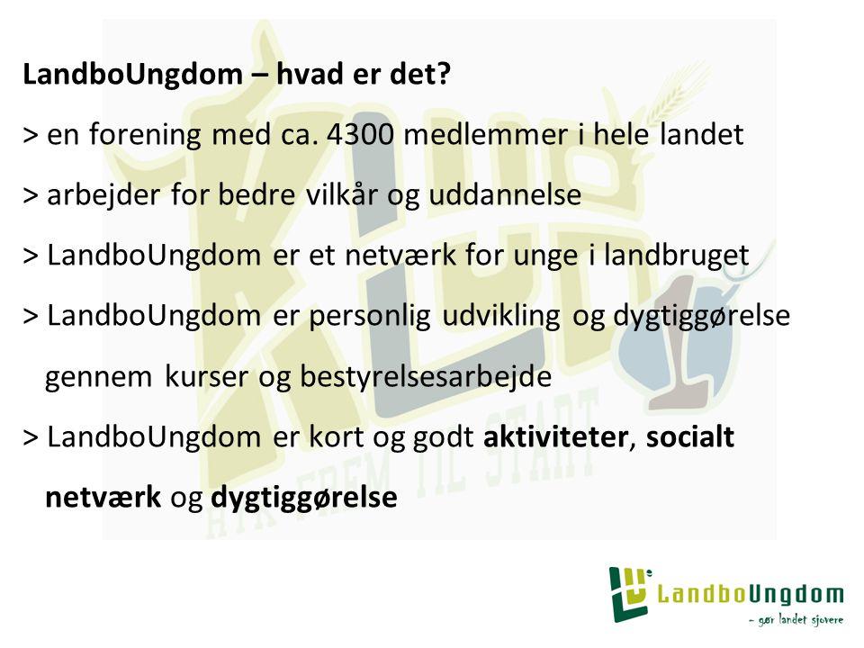 LandboUngdom – hvad er det. > en forening med ca.