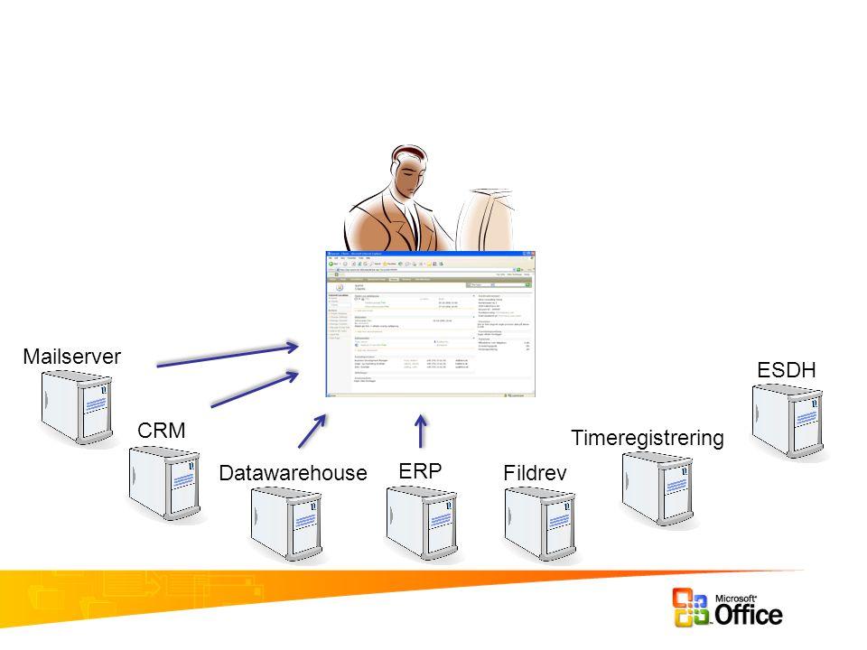 Mailserver CRM Datawarehouse ERP Fildrev Timeregistrering ESDH