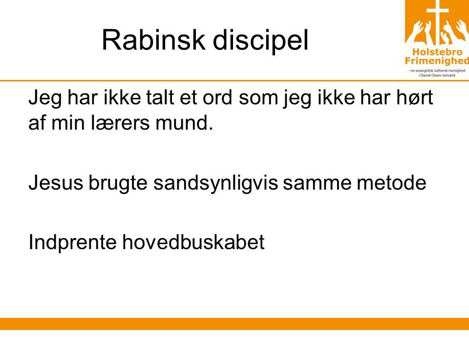 Rabinsk discipel Jeg har ikke talt et ord som jeg ikke har hørt af min lærers mund.