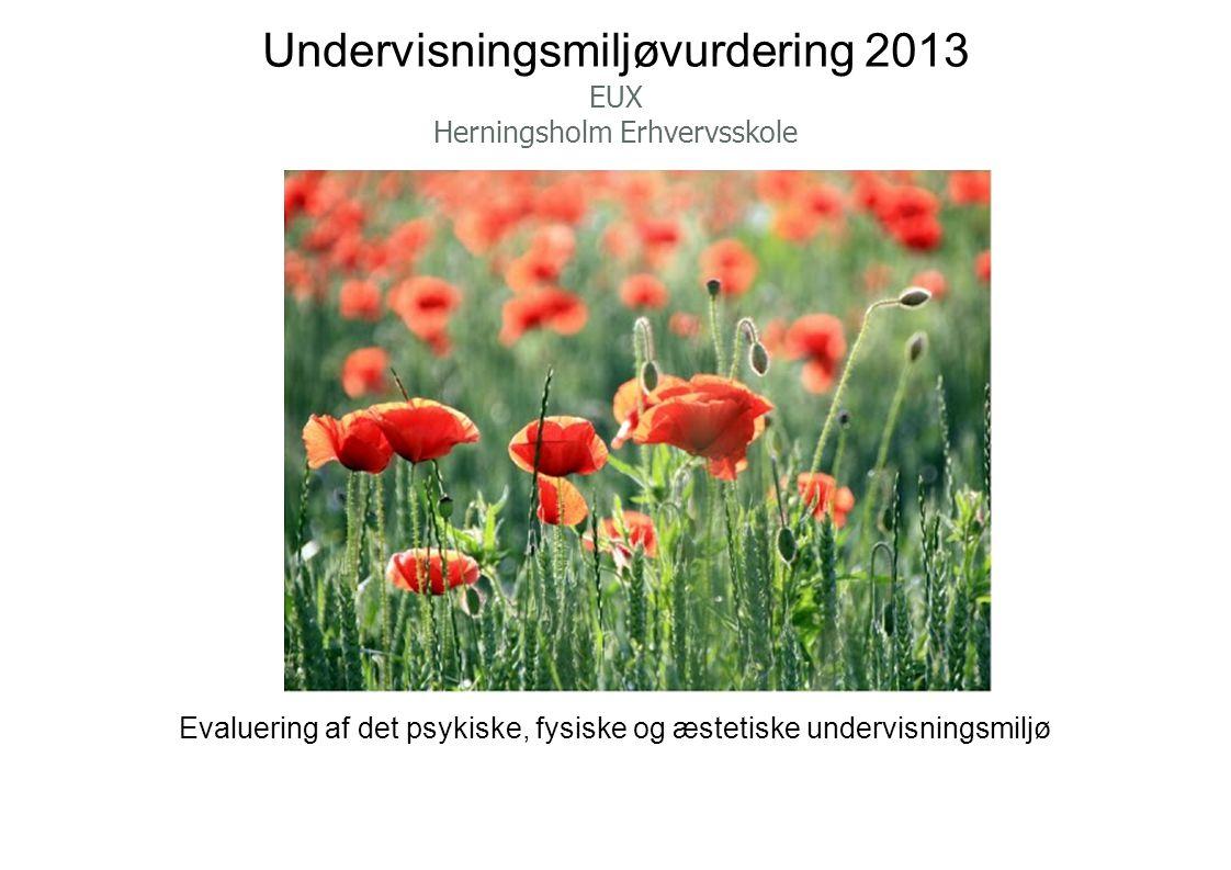 Undervisningsmiljøvurdering 2013 EUX Herningsholm Erhvervsskole Evaluering af det psykiske, fysiske og æstetiske undervisningsmiljø