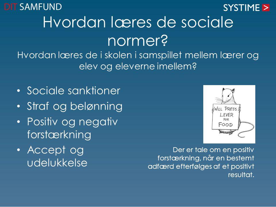 Hvordan læres de sociale normer.