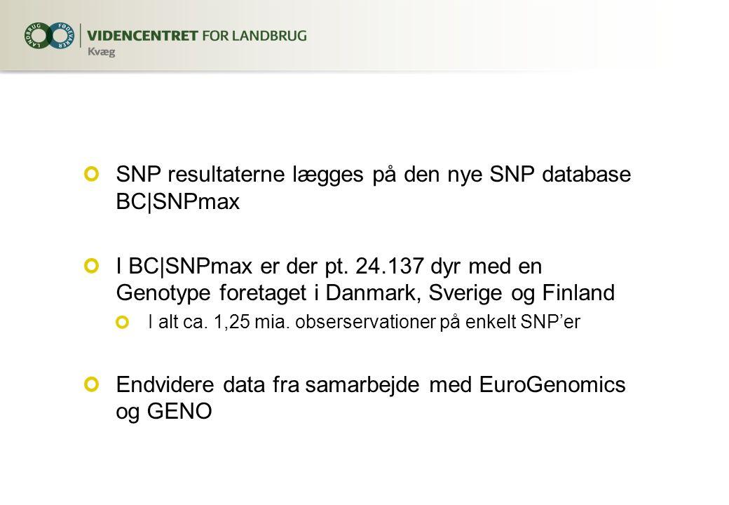 SNP resultaterne lægges på den nye SNP database BC|SNPmax I BC|SNPmax er der pt.
